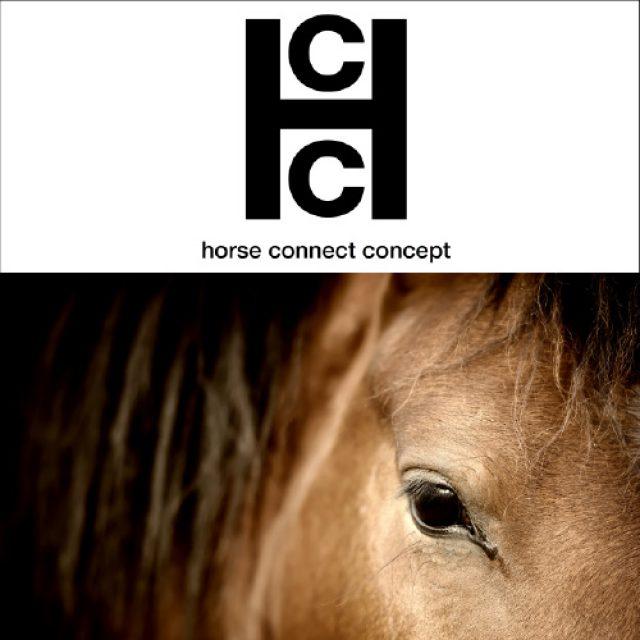 HORSE CONNECT CONCEPT